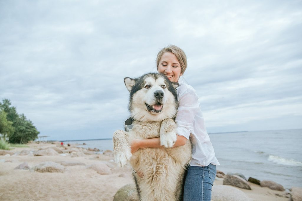 woman traveling with dog
